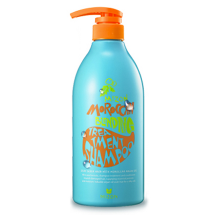 Шампунь Mizon All in One Moroсcan Blending Treatment Shampoo